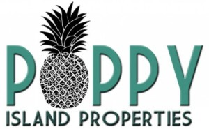 Greg Poppy Hawaii Real Estate Maui Beaches Best buy